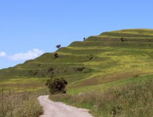 Elmaradt Szakrális földrajz: A Kárpát medence titkai